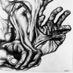The Glove by Barry Hill