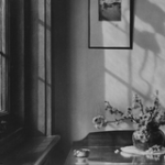 The Space of Biography: Writing on Olive Cotton