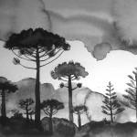 Echoes of Gondwana