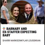 MP, Extramarital Affair, Pregnant Staffer. Shock! Shame!